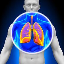 Exceso de alcohol daña los pulmones