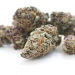 Marihuana - hierba
