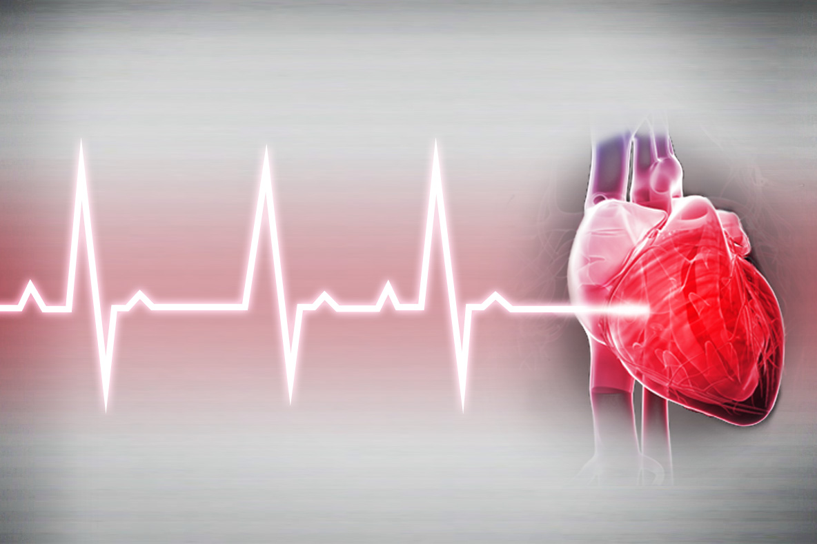 heart rate Multiple formulas show you what your theoretical maximum heart rate is for training and exercise.