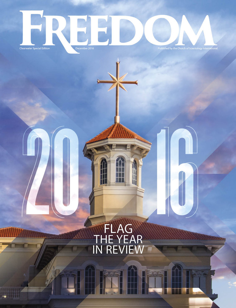 2016. Flag. The Year in Review